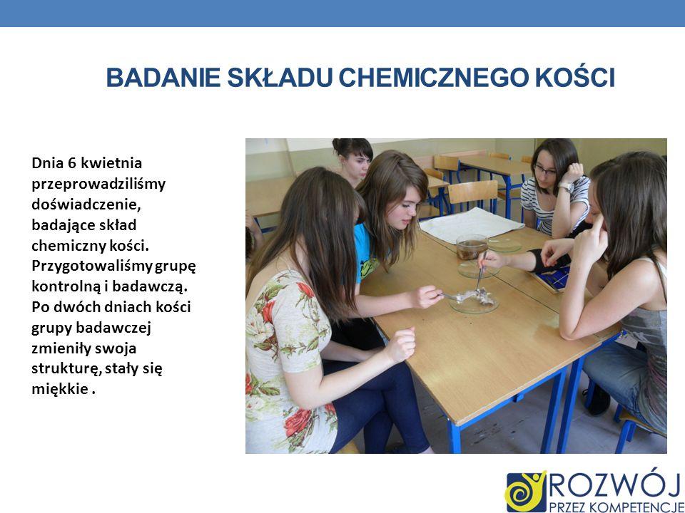 Badanie składu chemicznego kości
