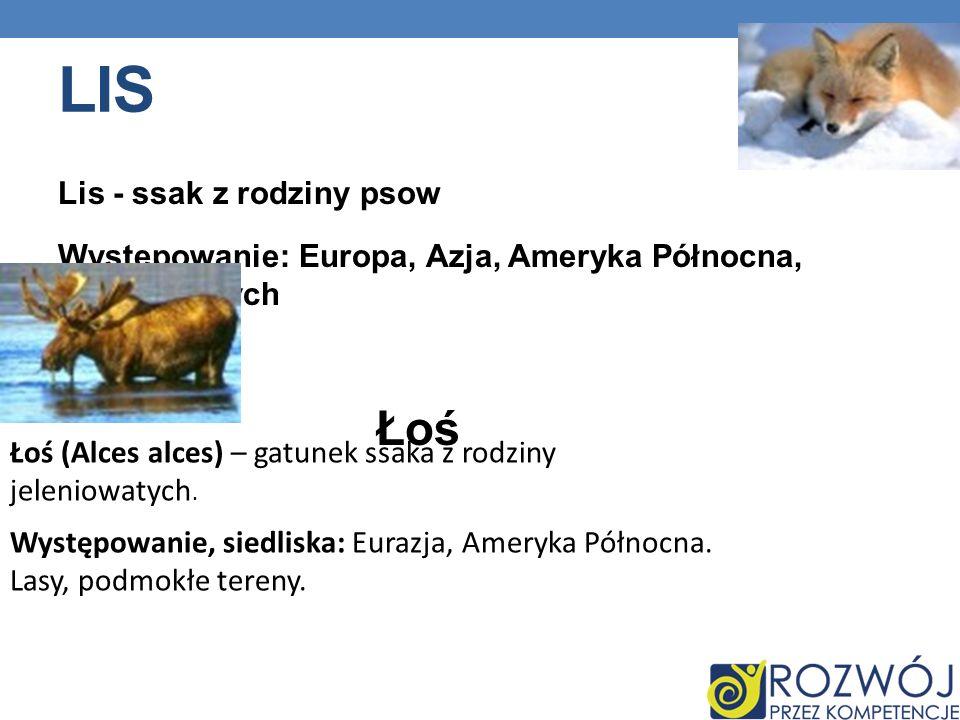 Lis Lis - ssak z rodziny psow Występowanie: Europa, Azja, Ameryka Północna, Australiaatych Łoś