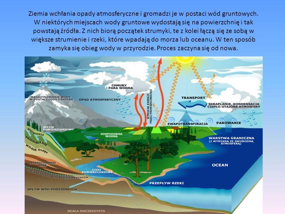 Ziemia wchłania opady atmosferyczne i gromadzi je w postaci wód gruntowych.