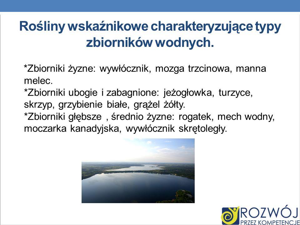 Rośliny wskaźnikowe charakteryzujące typy zbiorników wodnych.