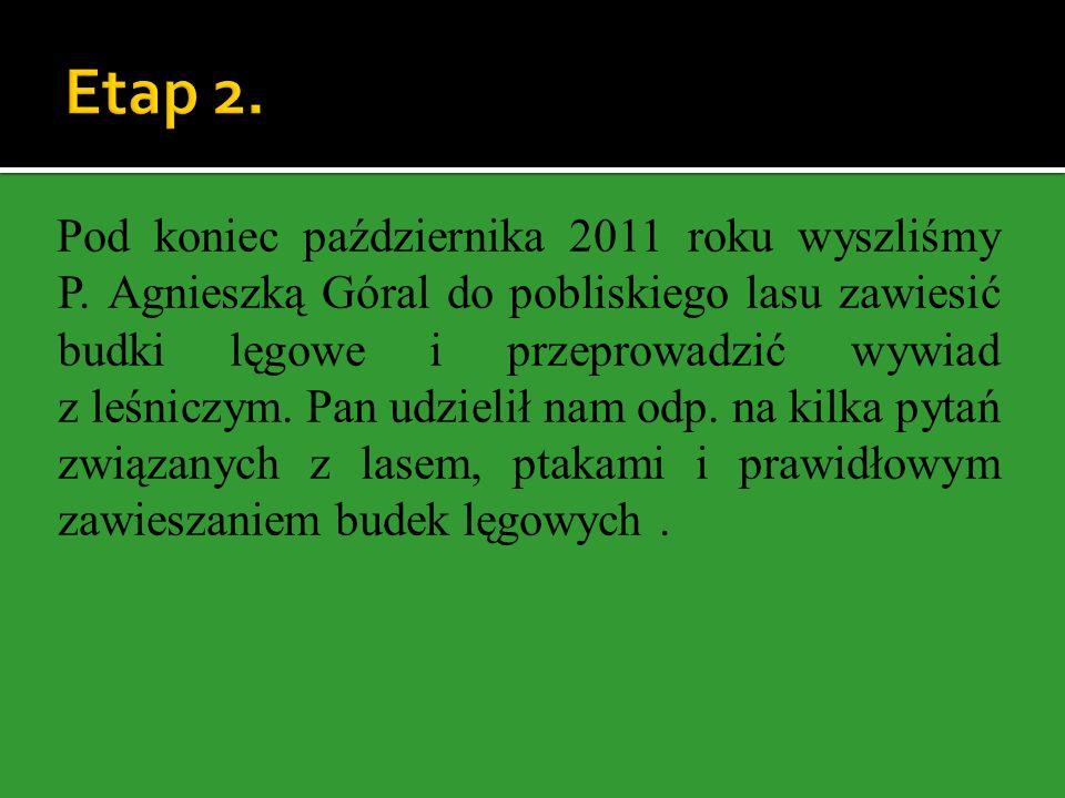 Etap 2.