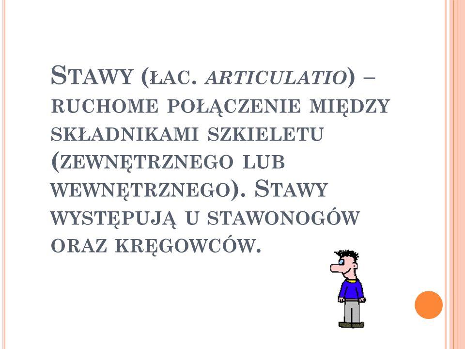 Stawy (łac.