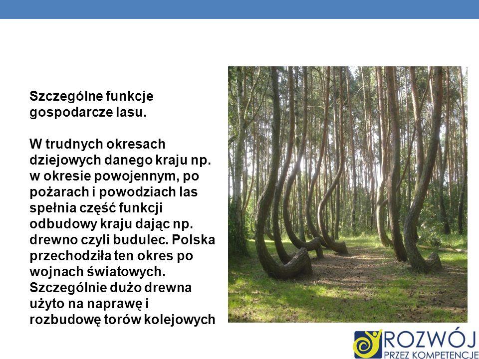 Szczególne funkcje gospodarcze lasu