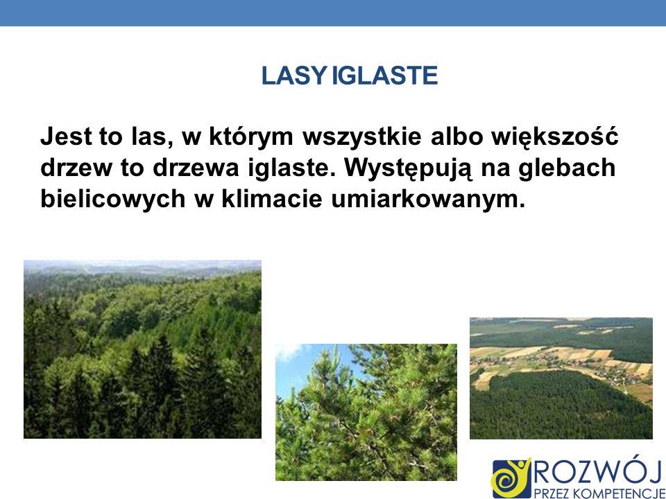 Lasy iglaste Jest to las, w którym wszystkie albo większość drzew to drzewa iglaste.