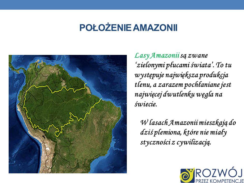 Położenie Amazonii