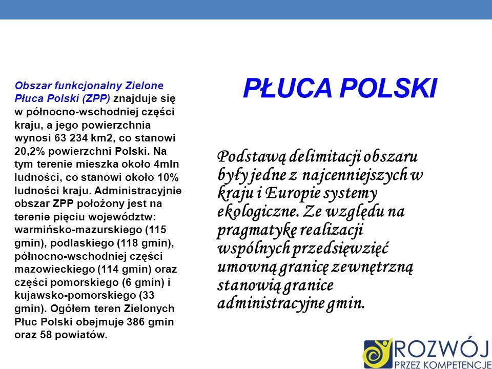 Płuca Polski