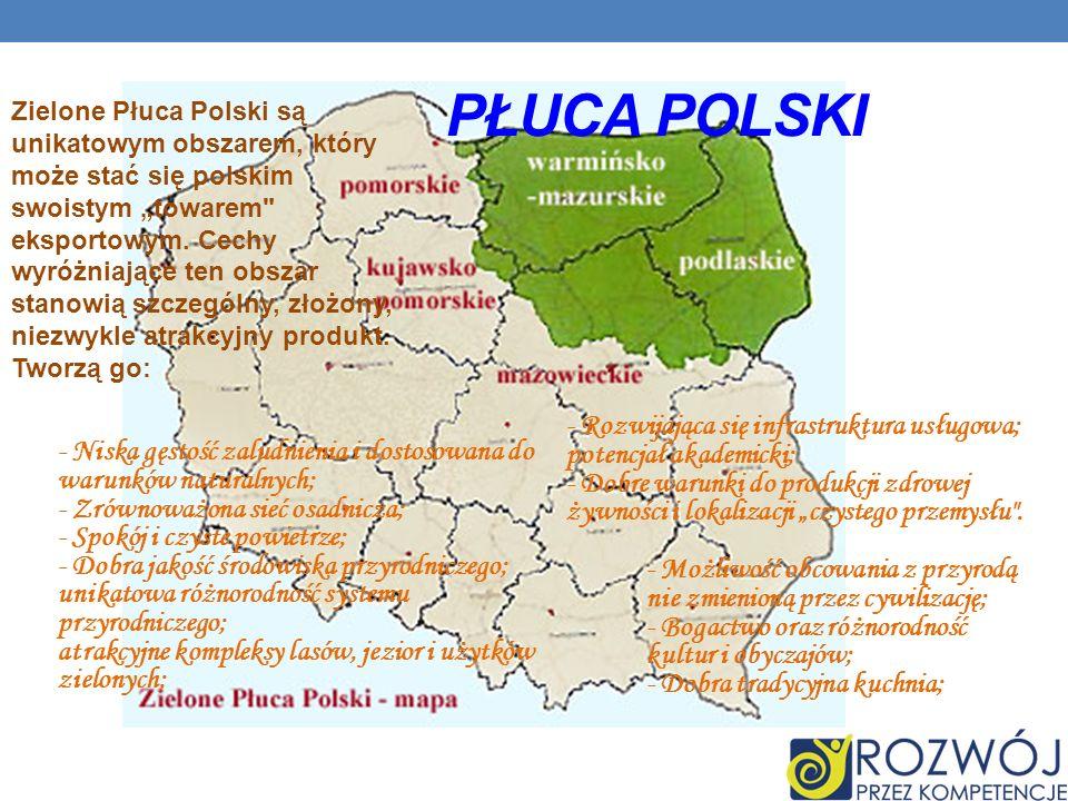 Płuca Polski - Rozwijająca się infrastruktura usługowa;