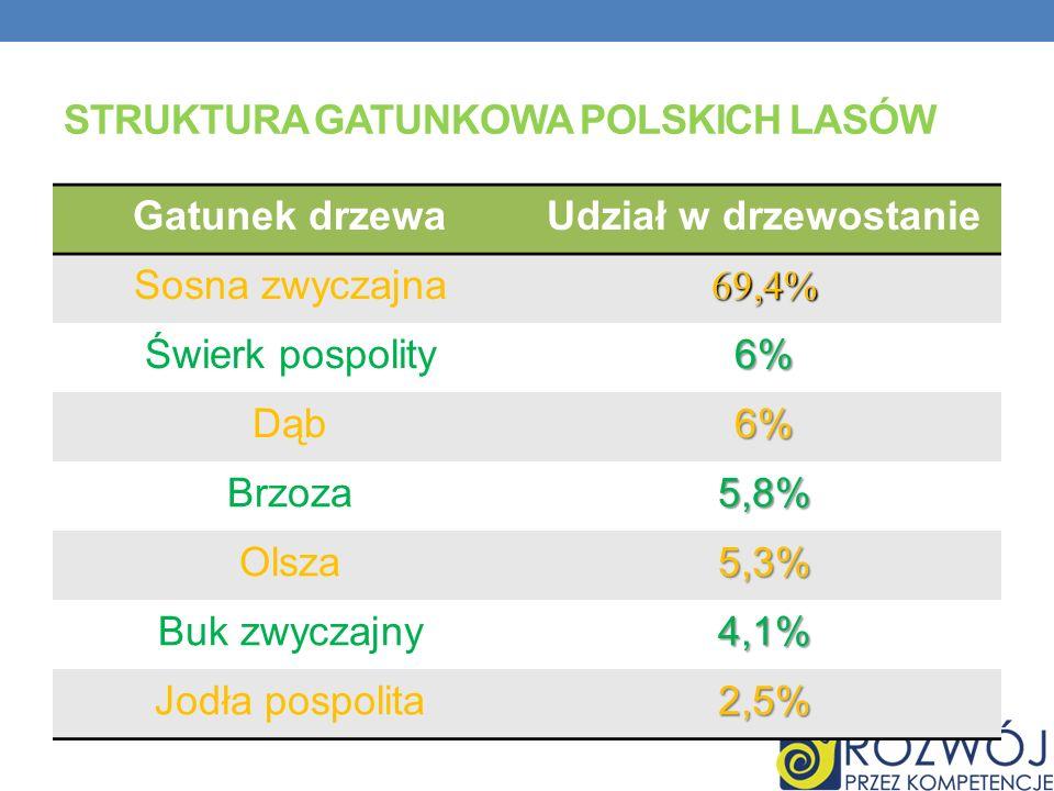 Struktura gatunkowa polskich lasów