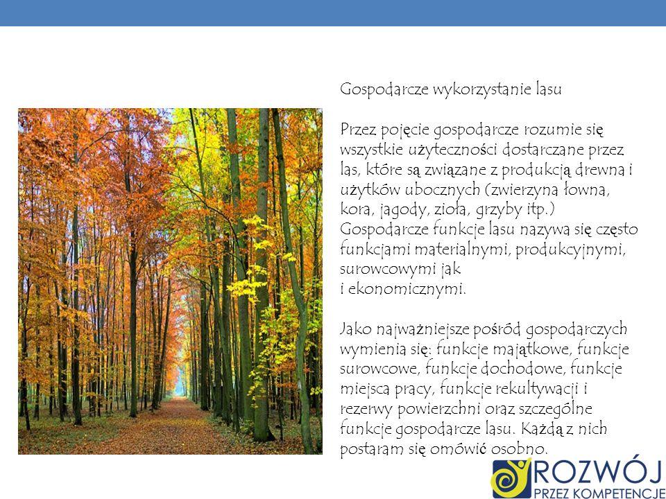 Gospodarcze wykorzystanie lasu Przez pojęcie gospodarcze rozumie się wszystkie użyteczności dostarczane przez las, które są związane z produkcją drewna i użytków ubocznych (zwierzyna łowna, kora, jagody, zioła, grzyby itp.) Gospodarcze funkcje lasu nazywa się często funkcjami materialnymi, produkcyjnymi, surowcowymi jak i ekonomicznymi.