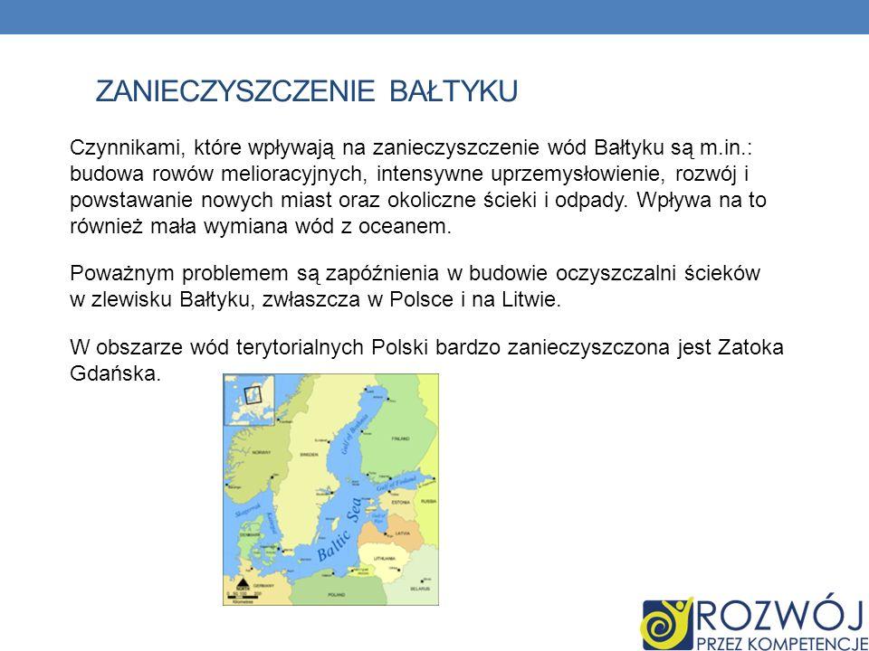 Zanieczyszczenie Bałtyku