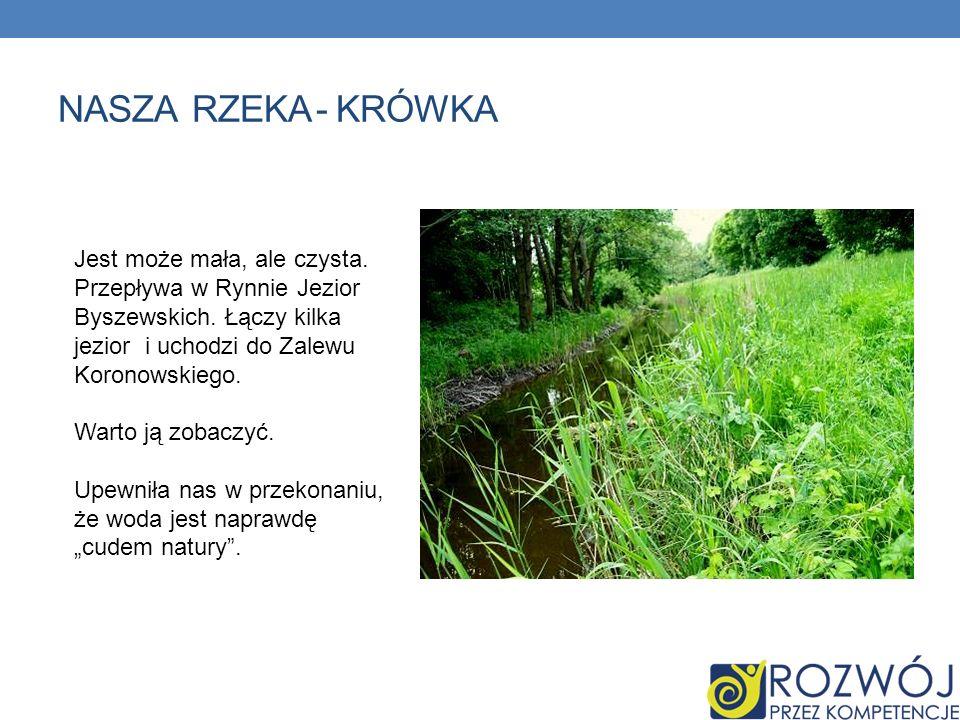 Nasza rzeka - krówka Jest może mała, ale czysta. Przepływa w Rynnie Jezior Byszewskich. Łączy kilka jezior i uchodzi do Zalewu Koronowskiego.