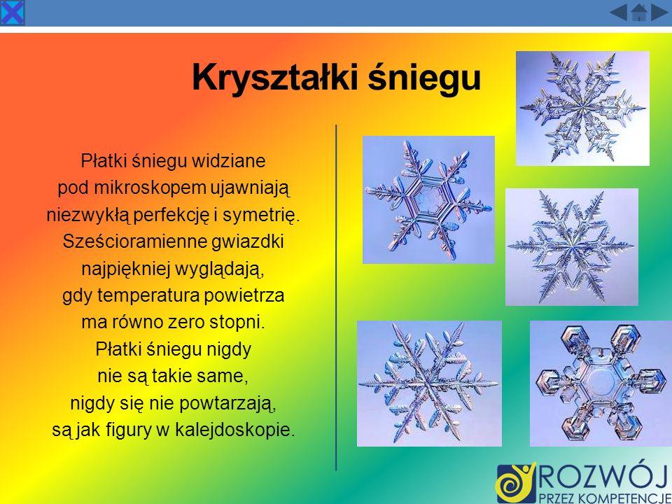 Kryształki śniegu Płatki śniegu widziane pod mikroskopem ujawniają
