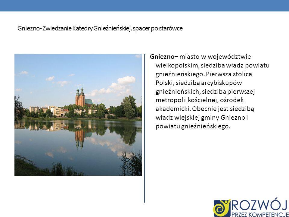Gniezno- Zwiedzanie Katedry Gnieźnieńskiej, spacer po starówce