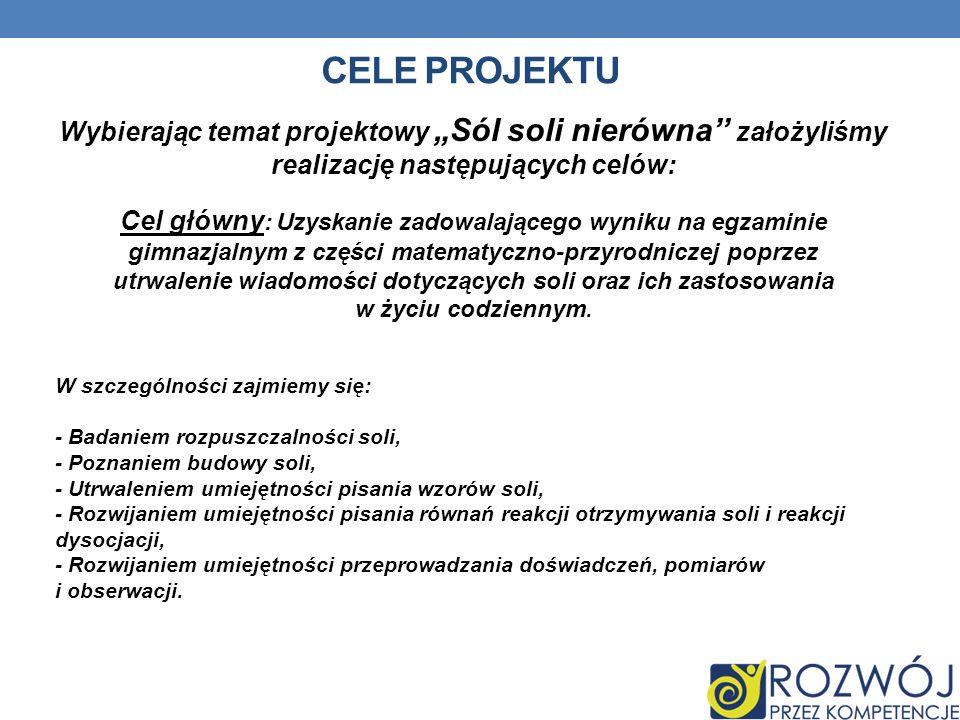 """Cele projektuWybierając temat projektowy """"Sól soli nierówna'' założyliśmy realizację następujących celów:"""