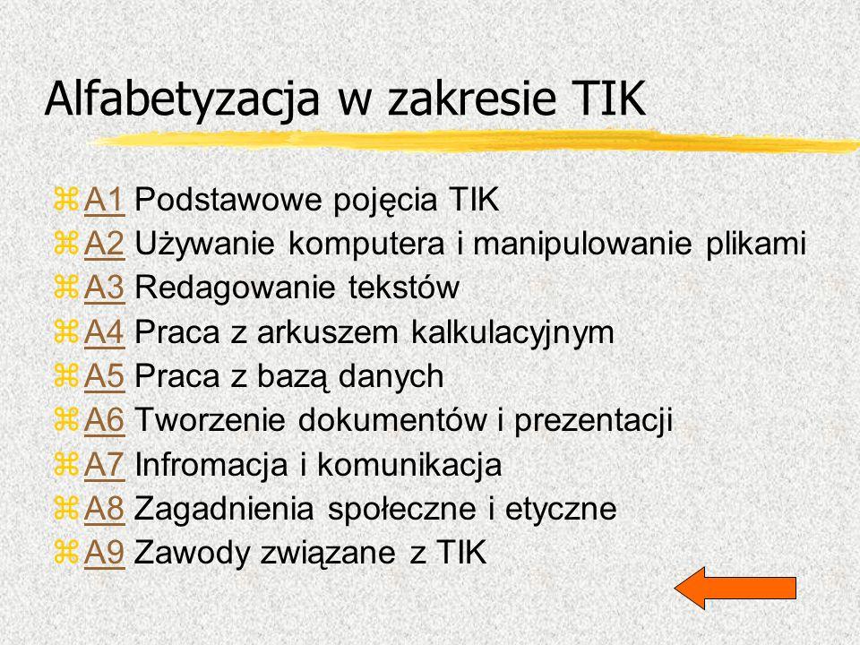 Alfabetyzacja w zakresie TIK