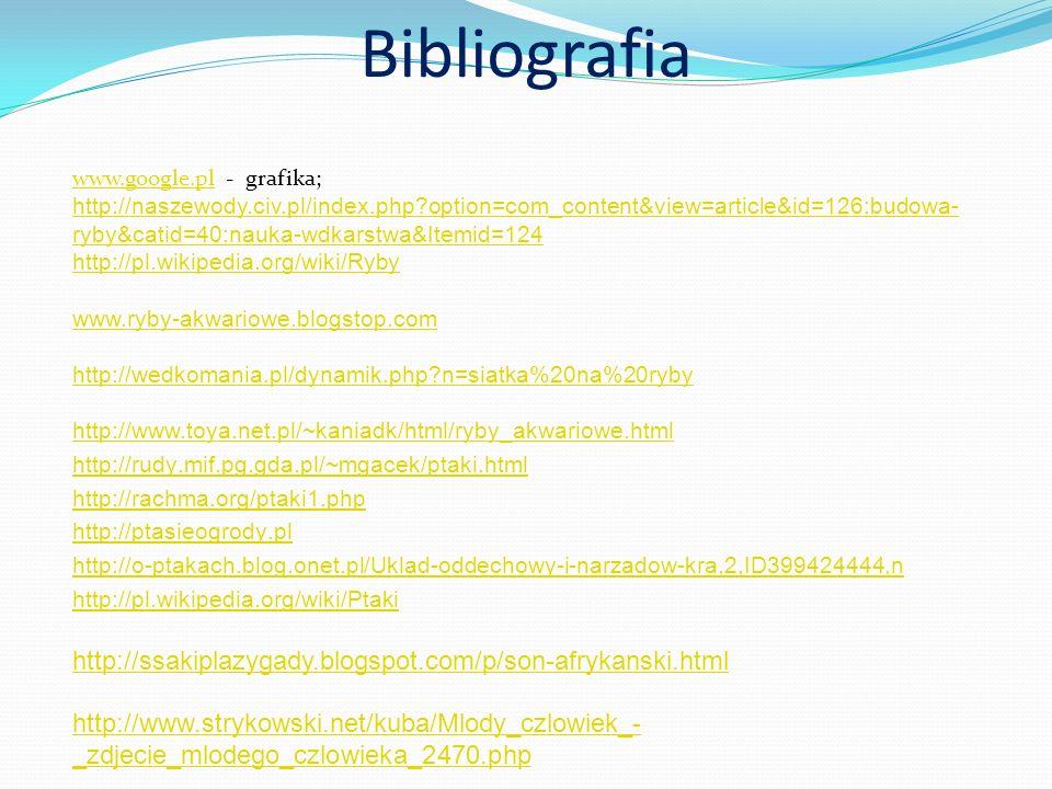 Bibliografia http://ssakiplazygady.blogspot.com/p/son-afrykanski.html