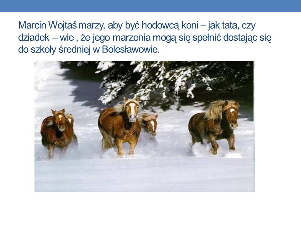 Marcin Wojtaś marzy, aby być hodowcą koni – jak tata, czy dziadek – wie , że jego marzenia mogą się spełnić dostając się do szkoły średniej w Bolesławowie.