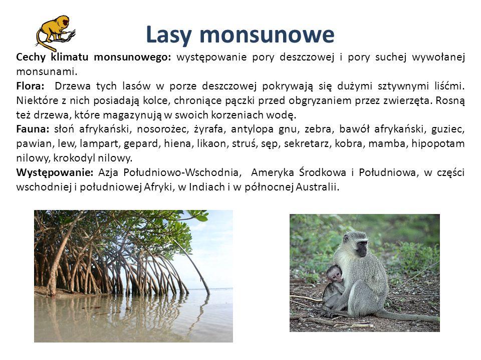 Lasy monsunowe Cechy klimatu monsunowego: występowanie pory deszczowej i pory suchej wywołanej monsunami.