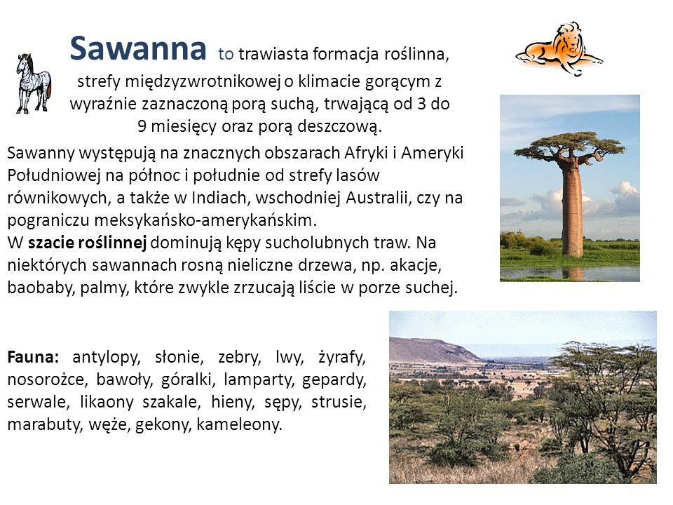 Sawanna to trawiasta formacja roślinna, strefy międzyzwrotnikowej o klimacie gorącym z wyraźnie zaznaczoną porą suchą, trwającą od 3 do 9 miesięcy oraz porą deszczową.