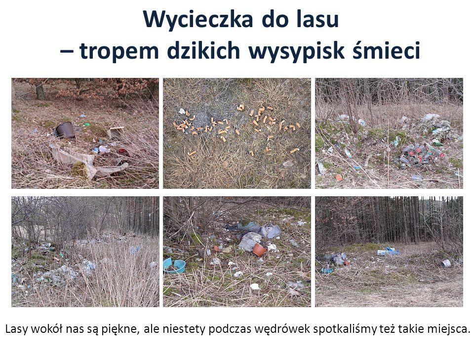 – tropem dzikich wysypisk śmieci