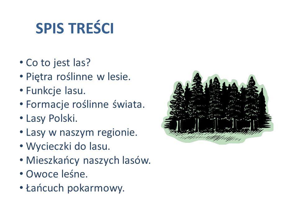 SPIS TREŚCI Co to jest las Piętra roślinne w lesie. Funkcje lasu.