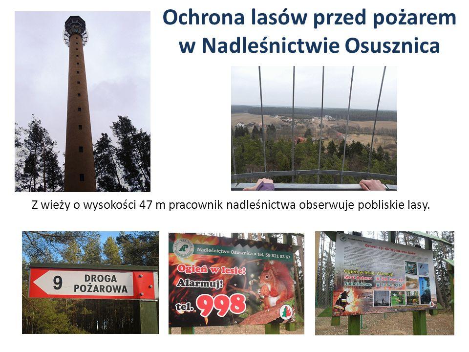 Ochrona lasów przed pożarem w Nadleśnictwie Osusznica