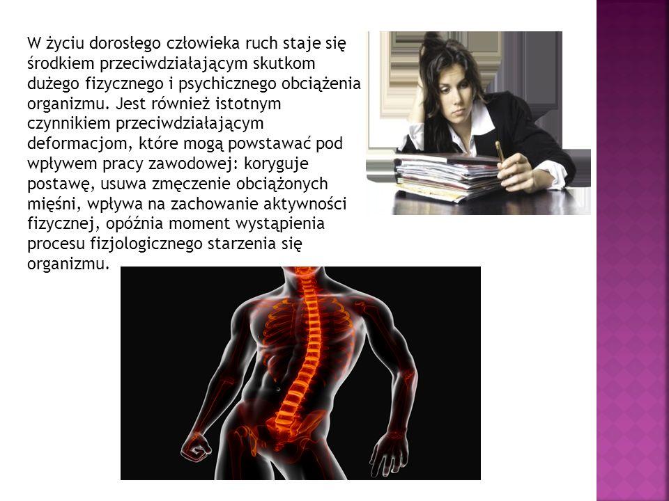 W życiu dorosłego człowieka ruch staje się środkiem przeciwdziałającym skutkom dużego fizycznego i psychicznego obciążenia organizmu.