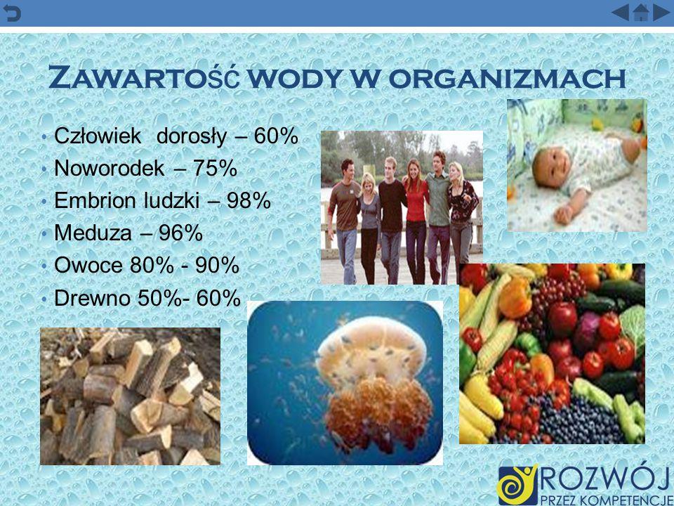 Zawartość wody w organizmach