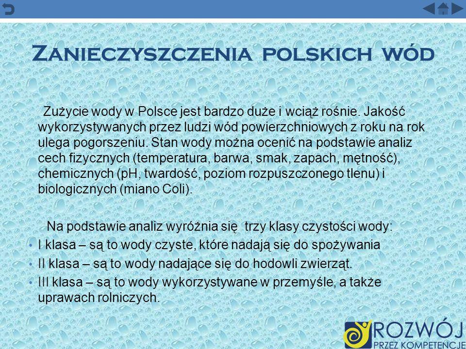 Zanieczyszczenia polskich wód