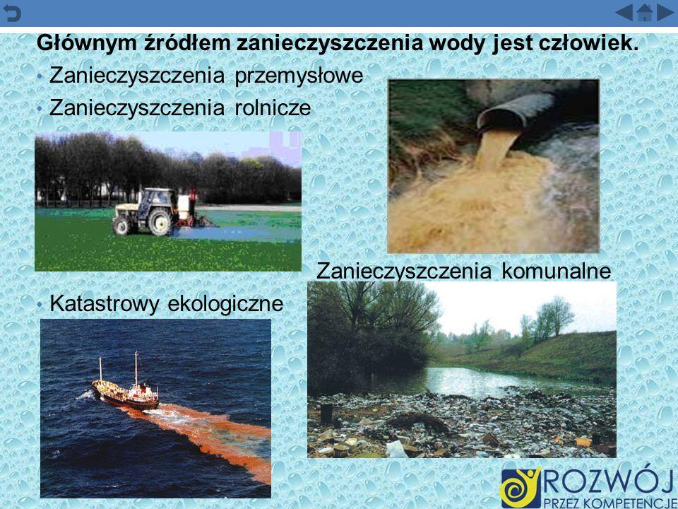 Głównym źródłem zanieczyszczenia wody jest człowiek.