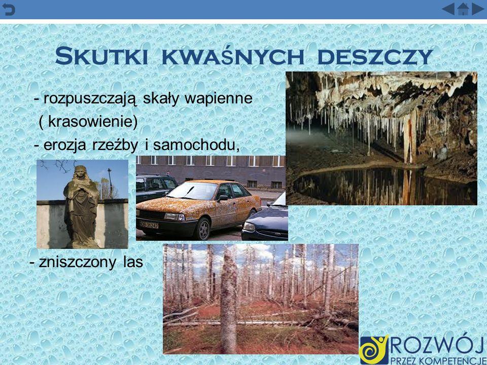 Skutki kwaśnych deszczy