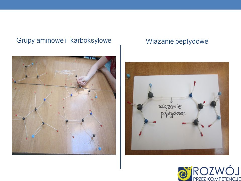 Grupy aminowe i karboksylowe