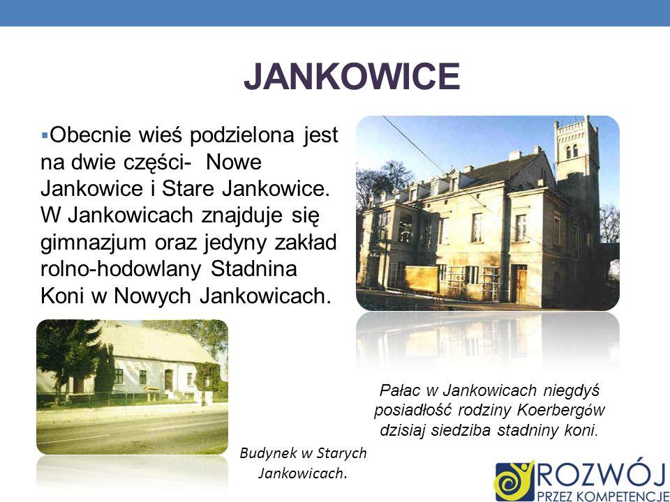 Budynek w Starych Jankowicach.