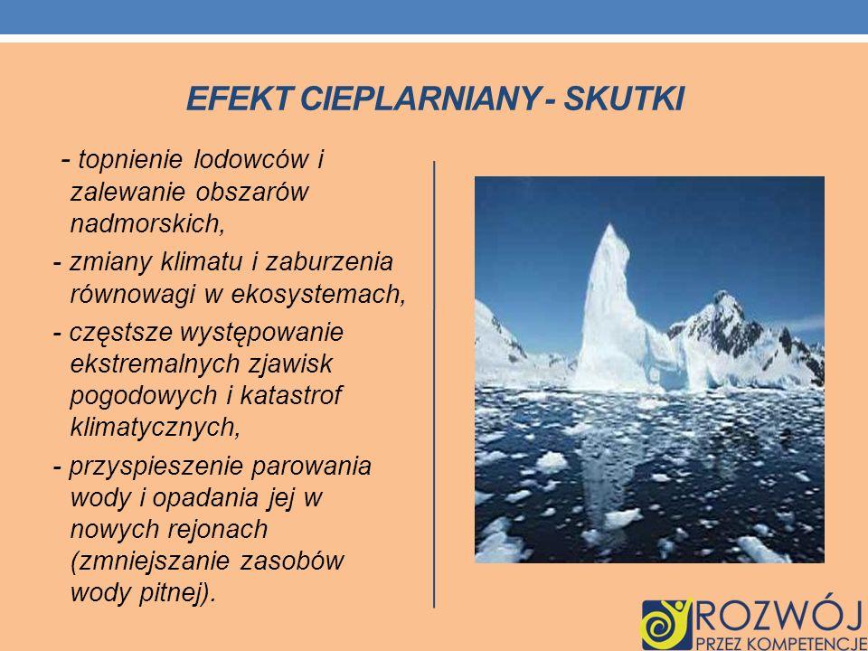 Efekt cieplarniany - skutki