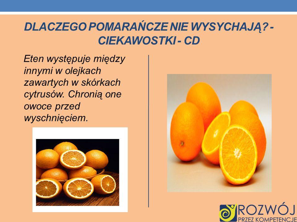 Dlaczego pomarańcze nie wysychają - Ciekawostki - cd