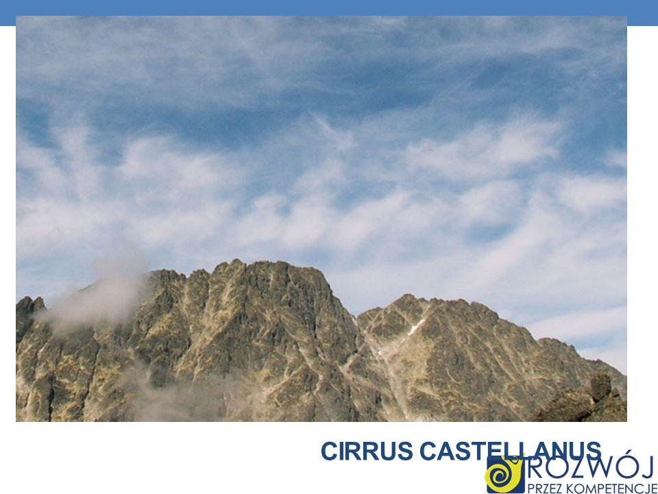 Cirrus castellanus
