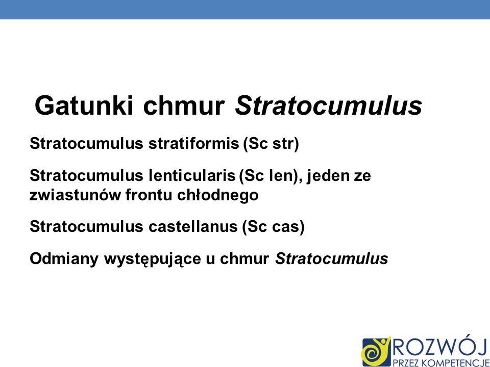 Gatunki chmur Stratocumulus Stratocumulus stratiformis (Sc str) Stratocumulus lenticularis (Sc len), jeden ze zwiastunów frontu chłodnego Stratocumulus castellanus (Sc cas) Odmiany występujące u chmur Stratocumulus