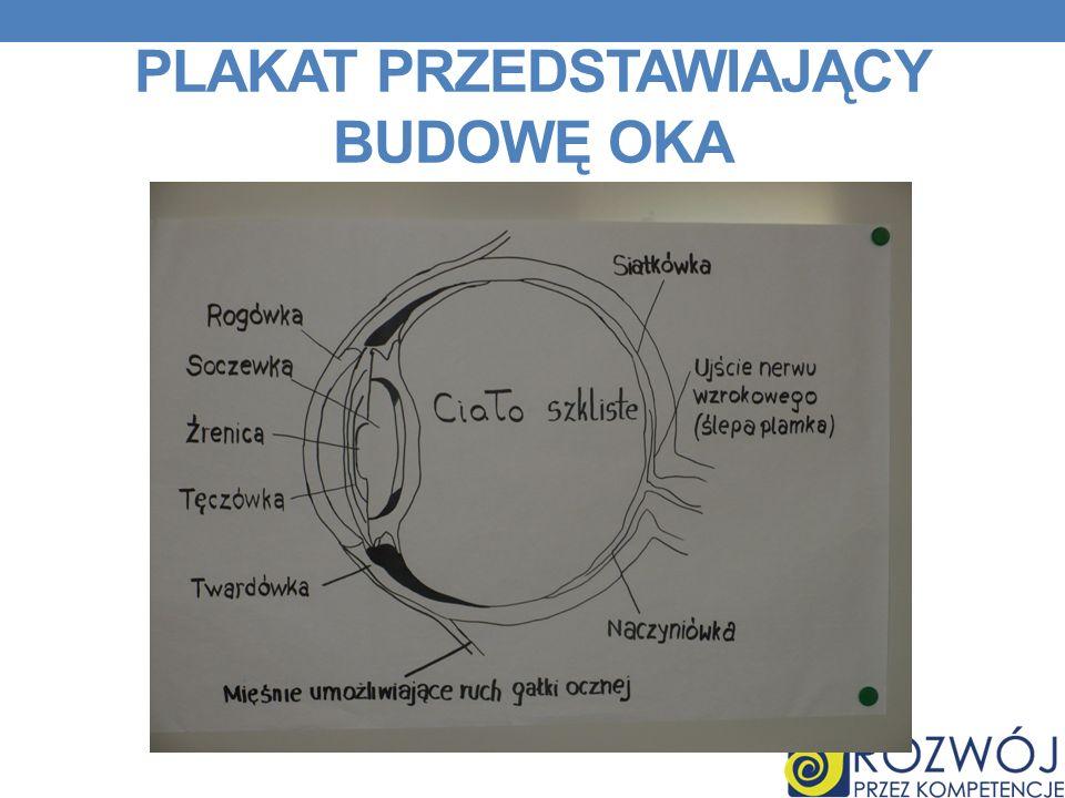Plakat przedstawiający Budowę oka