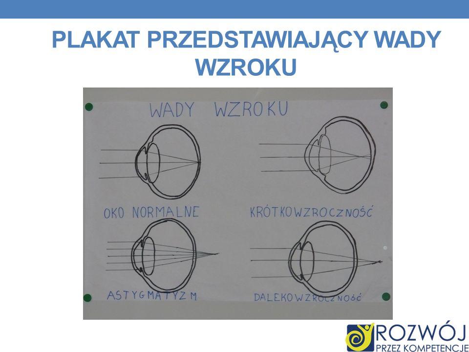 Plakat przedstawiający wady wzroku