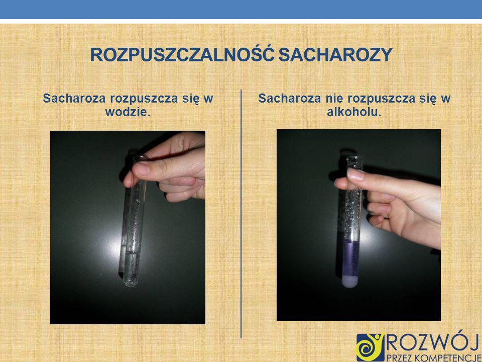 Rozpuszczalność sacharozy