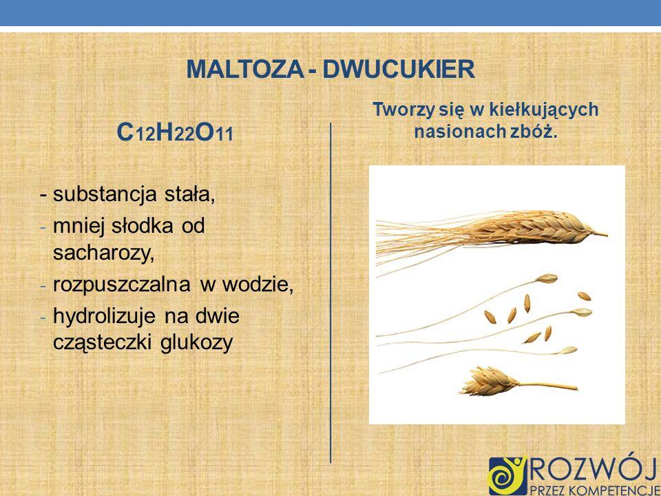 Tworzy się w kiełkujących nasionach zbóż.