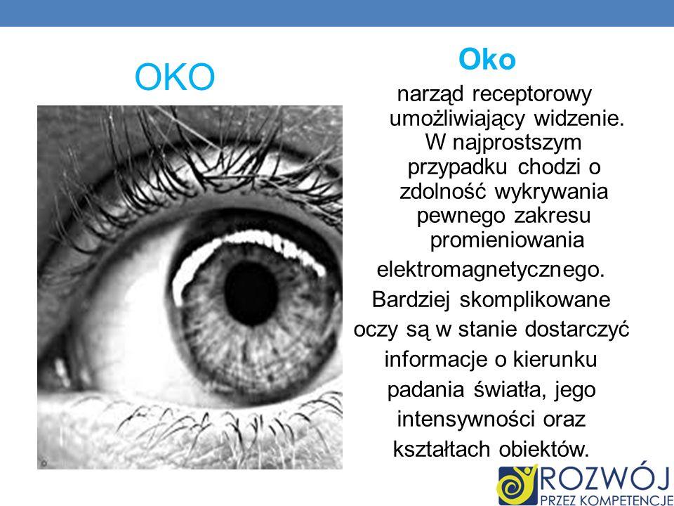 OKO Oko narząd receptorowy umożliwiający widzenie. W najprostszym przypadku chodzi o zdolność wykrywania pewnego zakresu promieniowania.