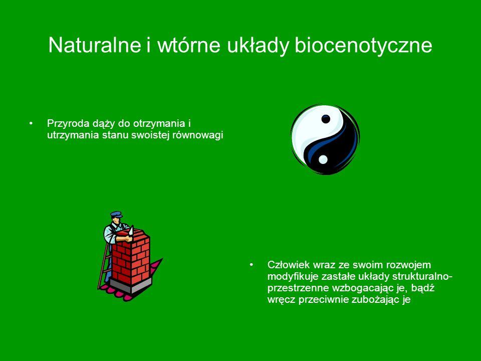 Naturalne i wtórne układy biocenotyczne
