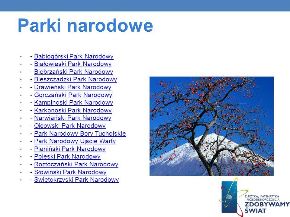 Parki narodowe - Babiogórski Park Narodowy - Białowieski Park Narodowy