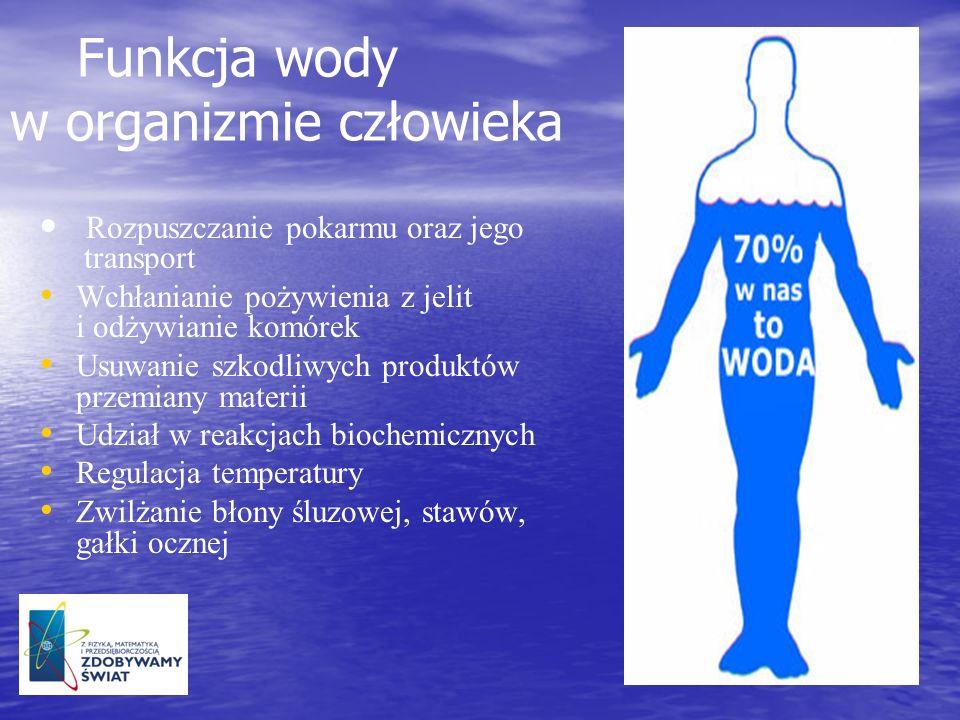 Funkcja wody w organizmie człowieka