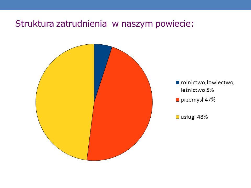 Struktura zatrudnienia w naszym powiecie: