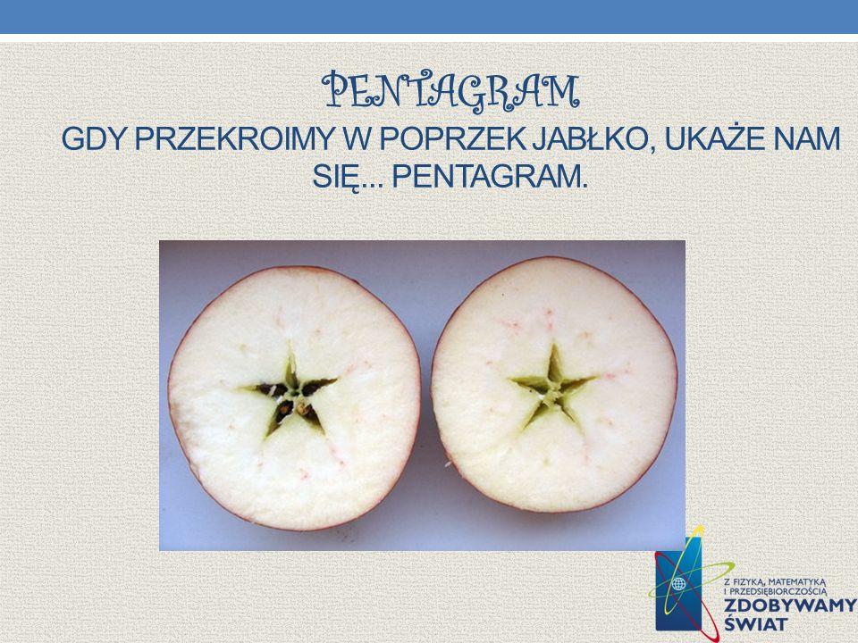Pentagram Gdy przekroimy w poprzek jabłko, ukaże nam się... pentagram.