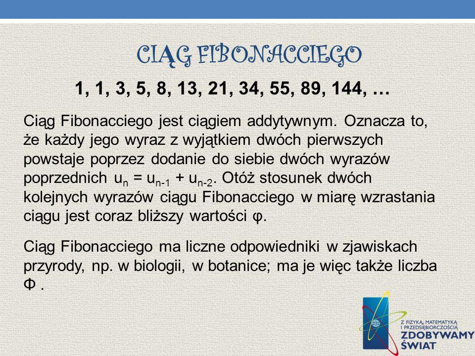 Ciąg Fibonacciego 1, 1, 3, 5, 8, 13, 21, 34, 55, 89, 144, …