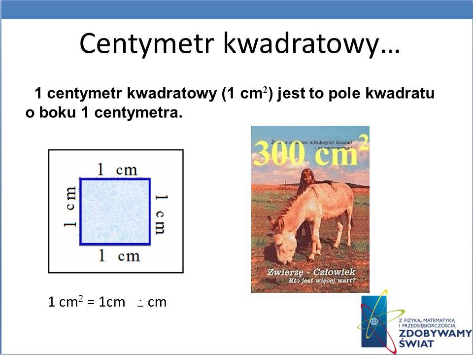 Centymetr kwadratowy…