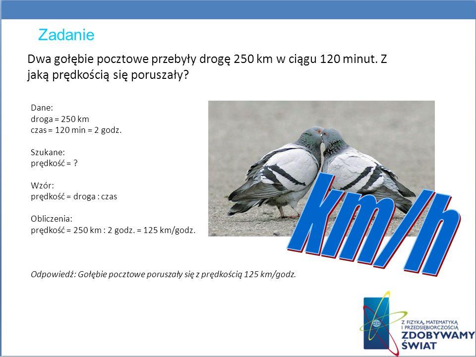 Zadanie Dwa gołębie pocztowe przebyły drogę 250 km w ciągu 120 minut. Z jaką prędkością się poruszały